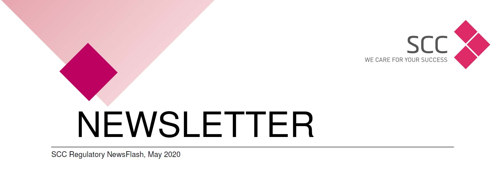 NL NewsFlash Letterhead 2020 05